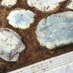 庭石の画像