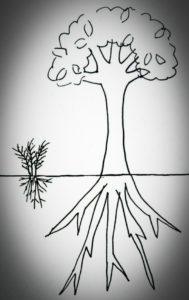 木の根の画像
