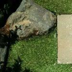人工芝の画像