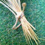 麻紐の画像