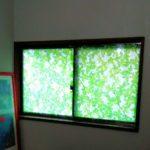 玄関窓の画像