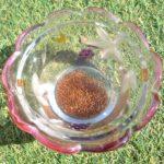 紫蘇の種の画像