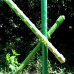 支柱の画像